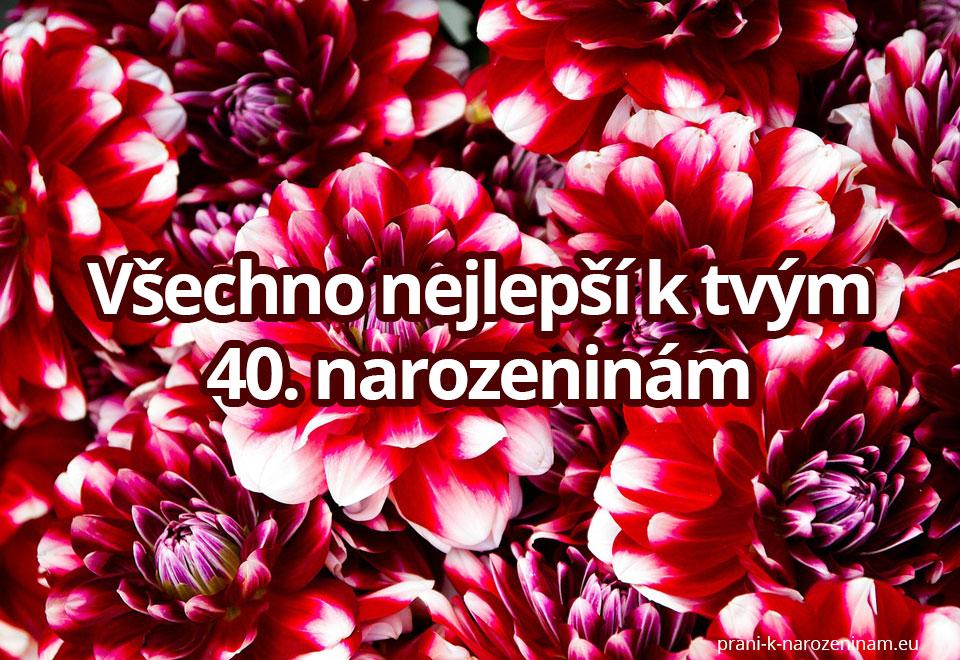 přání k narozeninám 40 roků Přání k 40. narozeninám | Prani k narozeninam.eu přání k narozeninám 40 roků