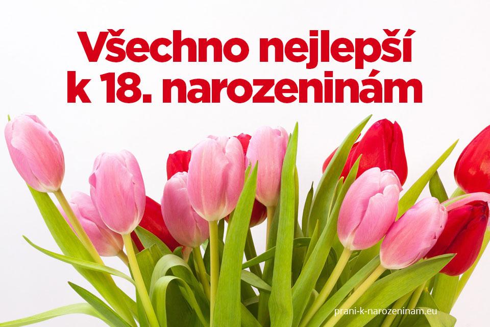 blahopřání k 18 narozeninám Přání k 18. narozeninám | Prani k narozeninam.eu blahopřání k 18 narozeninám