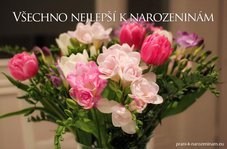 blahopřáni k narozeninám Univerzální přání k narozeninám | Prani k narozeninam.eu blahopřáni k narozeninám